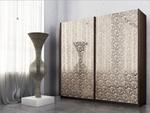תמונה של  ארונות הזזה: ארון הזזה 2 דלתות מרהיב ביופיו דגם שושן