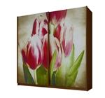 תמונה של  ארונות הזזה: ארון הזזה 2 דלתות מרהיב ביופיו דגם צבעוני