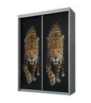 תמונה של ארונות  הזזה: ארון הזזה 2 דלתות מרהיב ביופיו דגם ברדלס